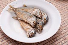 Free Fried Of Mackerel Fish Royalty Free Stock Photo - 23547015