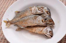 Free Fried Of Mackerel Fish Royalty Free Stock Photos - 23547018