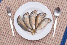 Free Fried Of Mackerel Fish Stock Image - 23547071