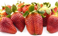 Free Strawberries Group Stock Photos - 23547773