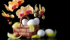 Free Easter Egg Stock Photography - 23550712