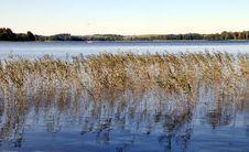 Free Lake. Early Autumn Stock Photos - 23550873