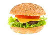 Free Cheeseburger Isolated Royalty Free Stock Image - 23560666