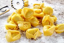 Free Fresh Tortellini Handmade Whit Egg Royalty Free Stock Photo - 23560795