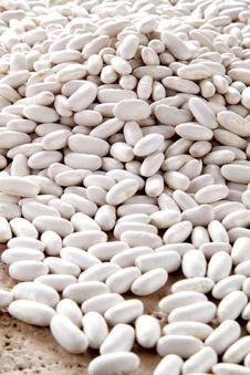 Free Borlotti Beans Royalty Free Stock Images - 23560949