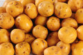 Free Potatoes. Royalty Free Stock Photo - 23579575