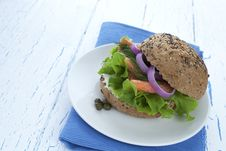 Free Smoked Salmon Burger Stock Photography - 23586122