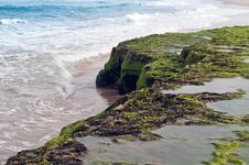 Free Coastline Brazil Stock Images - 23586324