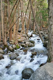 Free Flowing Stream Royalty Free Stock Photography - 23587107