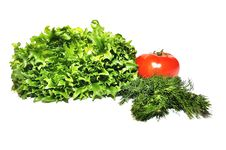Free Fresh Lettuce Frillice Salad Dill And Tomato Stock Photos - 23588913