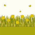 Free Glade With Yellow Flowers Stock Image - 23598661