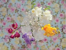 Free Bouquet Of Spring Colors Stock Images - 23591494
