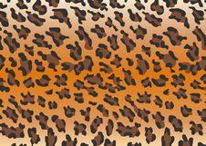 Vector Leopard Skin Stock Photo