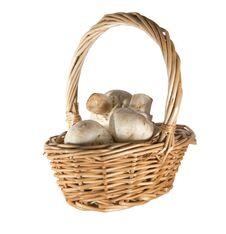 Free Mushroom Champignon Royalty Free Stock Photo - 23595835