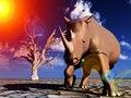 Free Rhino Wildlife 54 Stock Photography - 2366882
