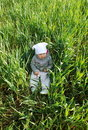 Free Baby In Corn Stock Photography - 2369402