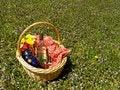 Free Backyard Picnic Royalty Free Stock Photo - 2369635