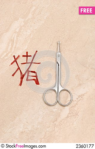 Free Chinese New Year Pig Symbol Royalty Free Stock Photography - 2360177