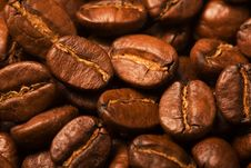 Free Coffee Beans Royalty Free Stock Photography - 2360437