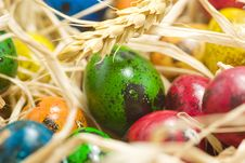 Free Easter Eggs In Nest Stock Image - 2361441