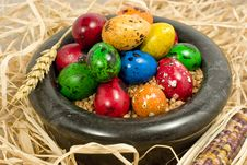 Free Colorful Eggs In Bowl Royalty Free Stock Photos - 2361598