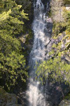 Free Waterfall Hiddin In The Trees Stock Image - 2362611