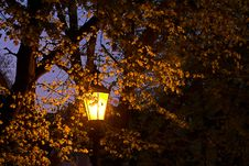 Free Yellow Street Lamp Royalty Free Stock Photos - 2362868