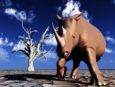 Free Rhino Wildlife 51 Stock Photography - 2366862