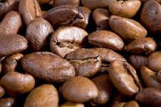 Free Good Smelling Espressobeans Royalty Free Stock Photos - 2367658