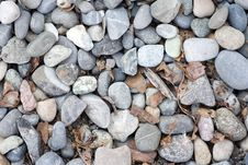 Free Stones With Rotten Leaves. Stock Images - 2367884