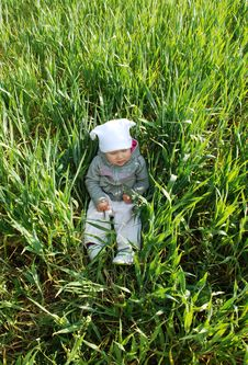 Baby In Corn Stock Photography
