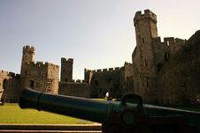 Free Caernarfon Castle And Cannon Royalty Free Stock Images - 2369979