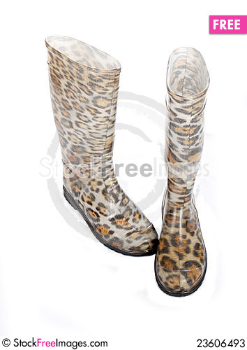 Free Rubber Boots Stock Photos - 23606493