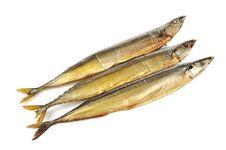 Free Smoked Saury Fish Royalty Free Stock Photography - 23610447