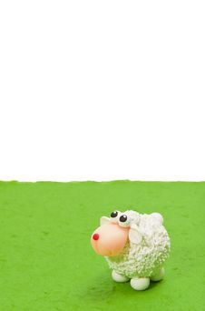 Free White Sheep On Green Grass Look Up Blank Area Royalty Free Stock Image - 23611316