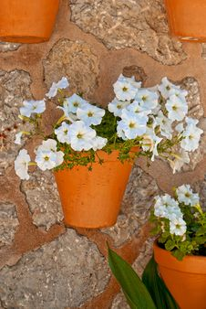 Free Wall With Flowers Royalty Free Stock Images - 23612529
