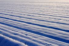 Free Snow Covered Cultivated Field Stock Photo - 23620350