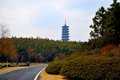 Free Path And Pagoda Royalty Free Stock Photos - 23637018