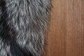 Free Fur On Wood Stock Image - 23639341