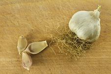 Free Garlic Royalty Free Stock Photography - 23632197