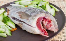 Free Fresh Fish. Stock Photos - 23634053