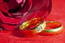 Free Wedding Rings Stock Photography - 23637912