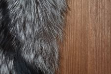 Free Fur On Wood Stock Image - 23639341