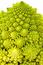 Free Broccoli Stock Photography - 23646782