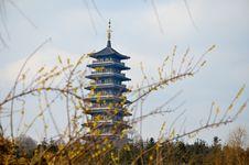 Bloom And Pagodas Stock Photos