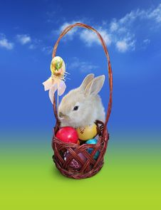 Free Easter Bunny  With Eggs Basket, Sky Royalty Free Stock Photography - 23642267