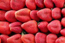 Free Strawberries Royalty Free Stock Photo - 23642305