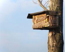 Free Nest Stock Image - 23644321