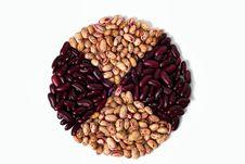 Free Common Beans Stock Photo - 23646730