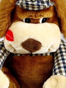 Free Plush Dog Stock Photography - 23648642